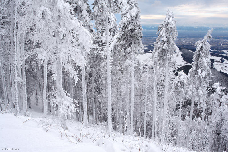 Schauinsland, Black Forest, Germany, Freiburg, snow