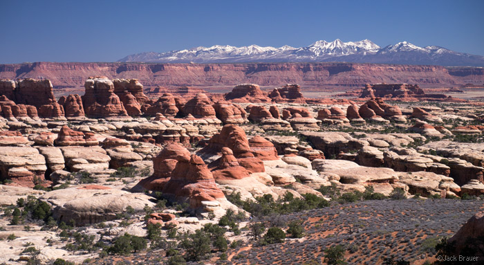 Canyonlands National Park, Utah, Needles District, La Sals