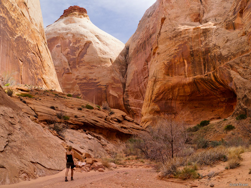 Robbers Roost Canyon, Utah, March, hiking