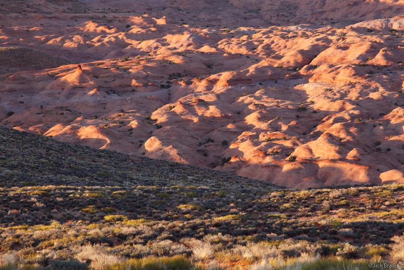 Coyote Gulch, Escalante, Utah, sandstone