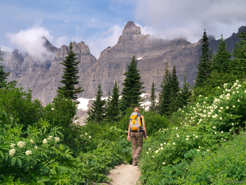 Iceberg Lake Trail | Mountain Photographer : a journal by
