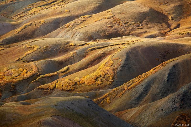 Stony Pass, autumn, tundra, San Juan Mountains, Colorado, September, abstract