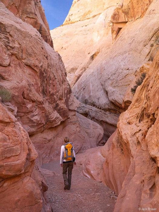 Little Wildhorse Canyon, San Rafael Swell, Utah, hiking