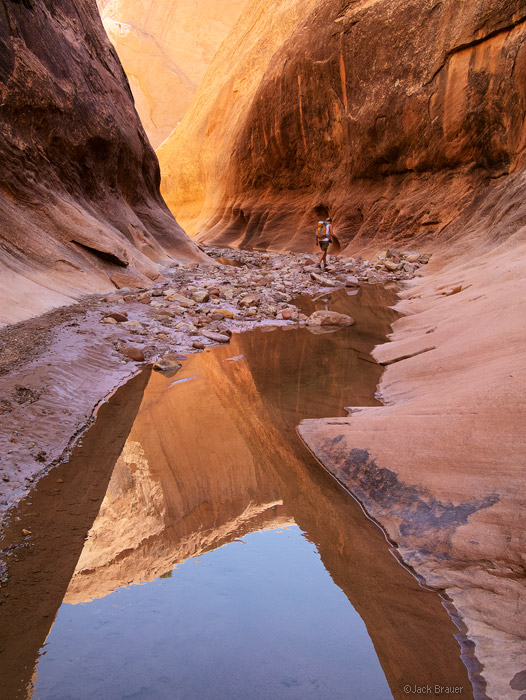 Halls Creek, Capitol Reef, Utah, hiking, reflection, april