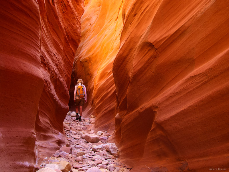 Little Death Hollow, Escalante National Monument, Utah