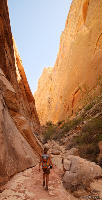 Surprise Canyon, Capitol Reef, hiking, April