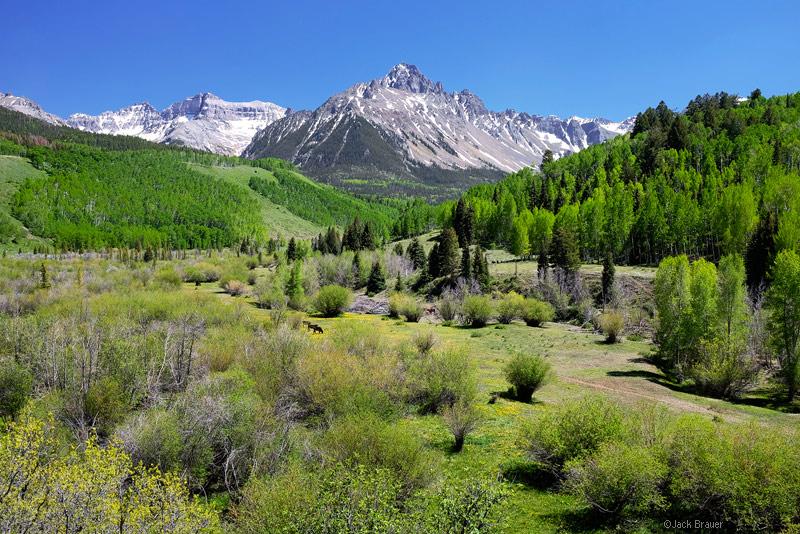 Mt. Sneffels, San Juan Mountains, spring, June, green, CR7
