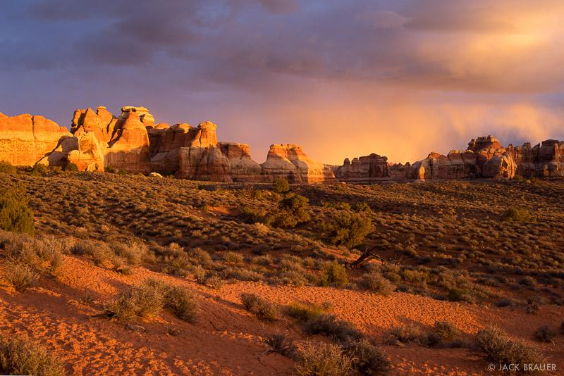 Canyonlands National Park, Needles District, Utah, Chesler Park