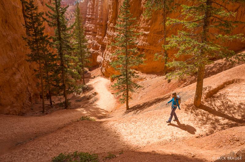 Bryce Canyon,Utah, Navajo Loop, hiking, trail