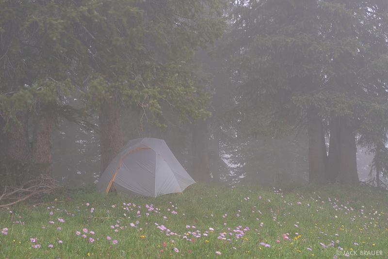 Colorado,San Juan Mountains,tent