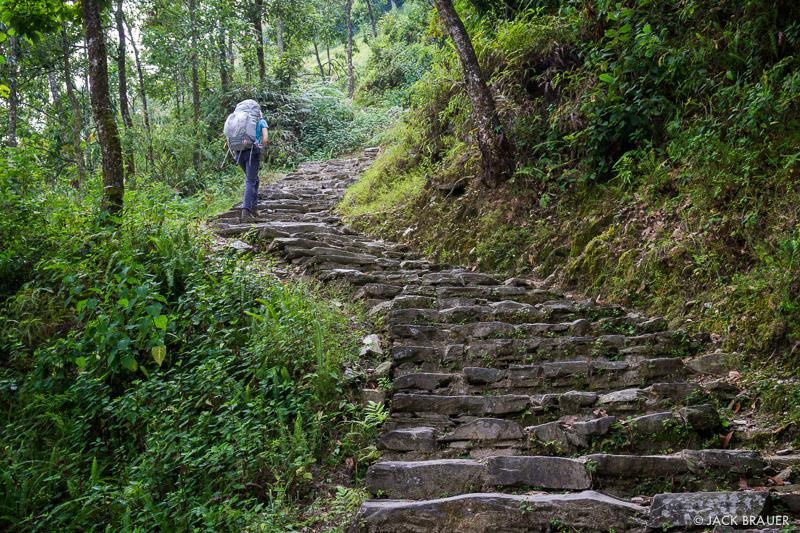 Annapurna Range,Himalaya,Nepal, Phedi