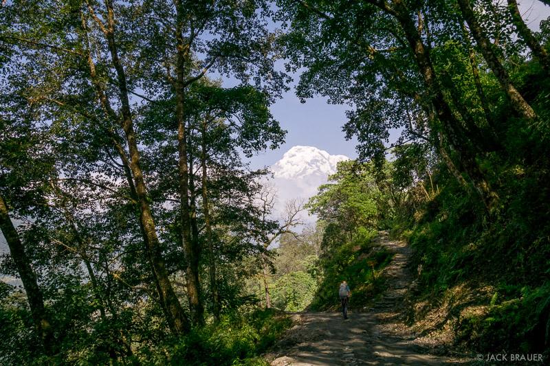 Annapurna South, Annpurna Range, Asia, Himalaya, Nepal, hiking