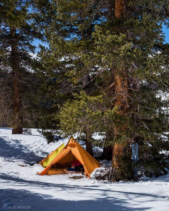 Colorado, San Juan Mountains, Uncompahgre Wilderness, tent