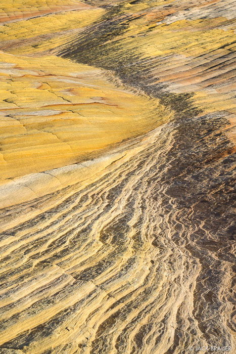Utah,Yellow Rock, Cockscomb
