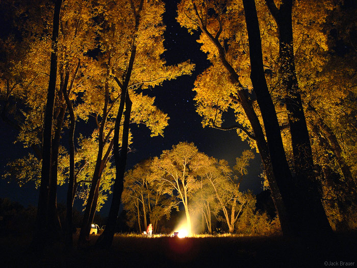 Cottonwood Bonfire, autumn, Colorado, photo