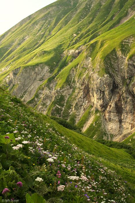 Allgäuer Alps, Germany, Trettachtal, Kemptner, green