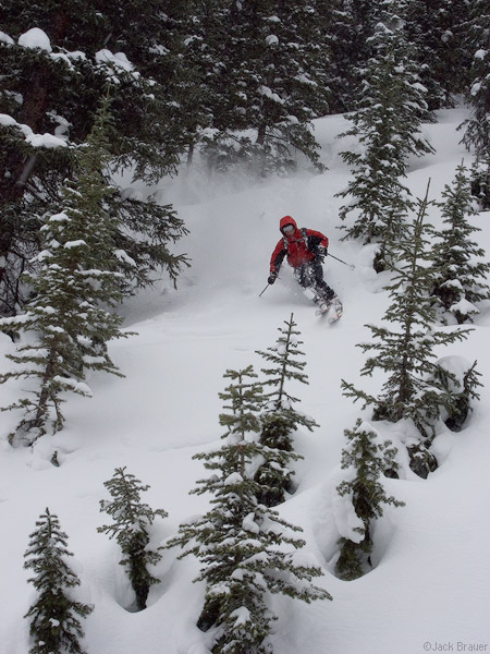 Tree Skiing, San Juan Mountains, Colorado, photo