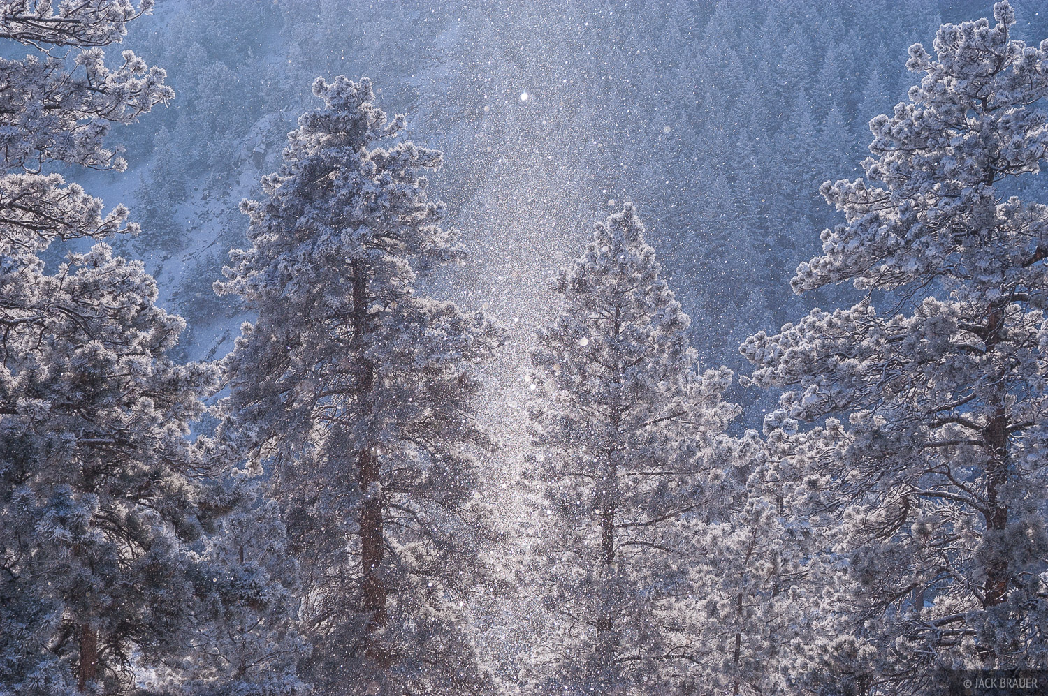 Boulder, Colorado, ice, crystals, winter, photo