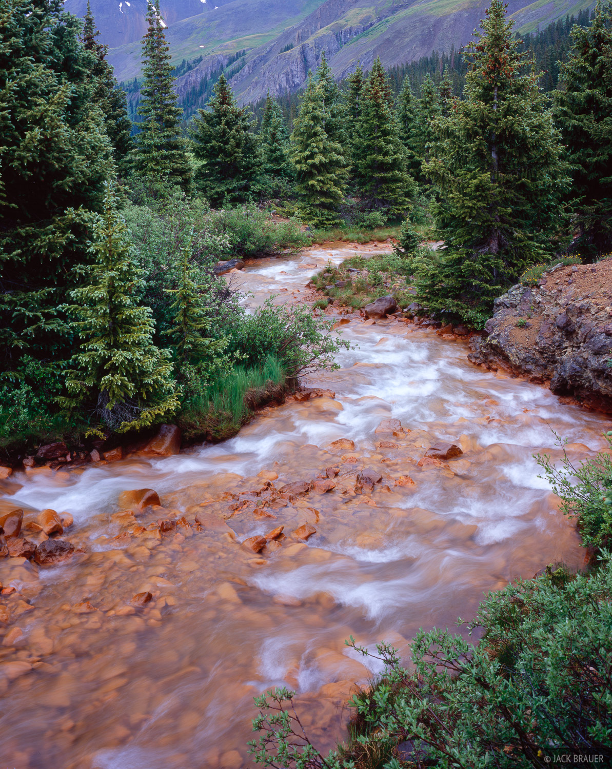 An iron-stained river deep within the Uncompahgre Wilderness, July.