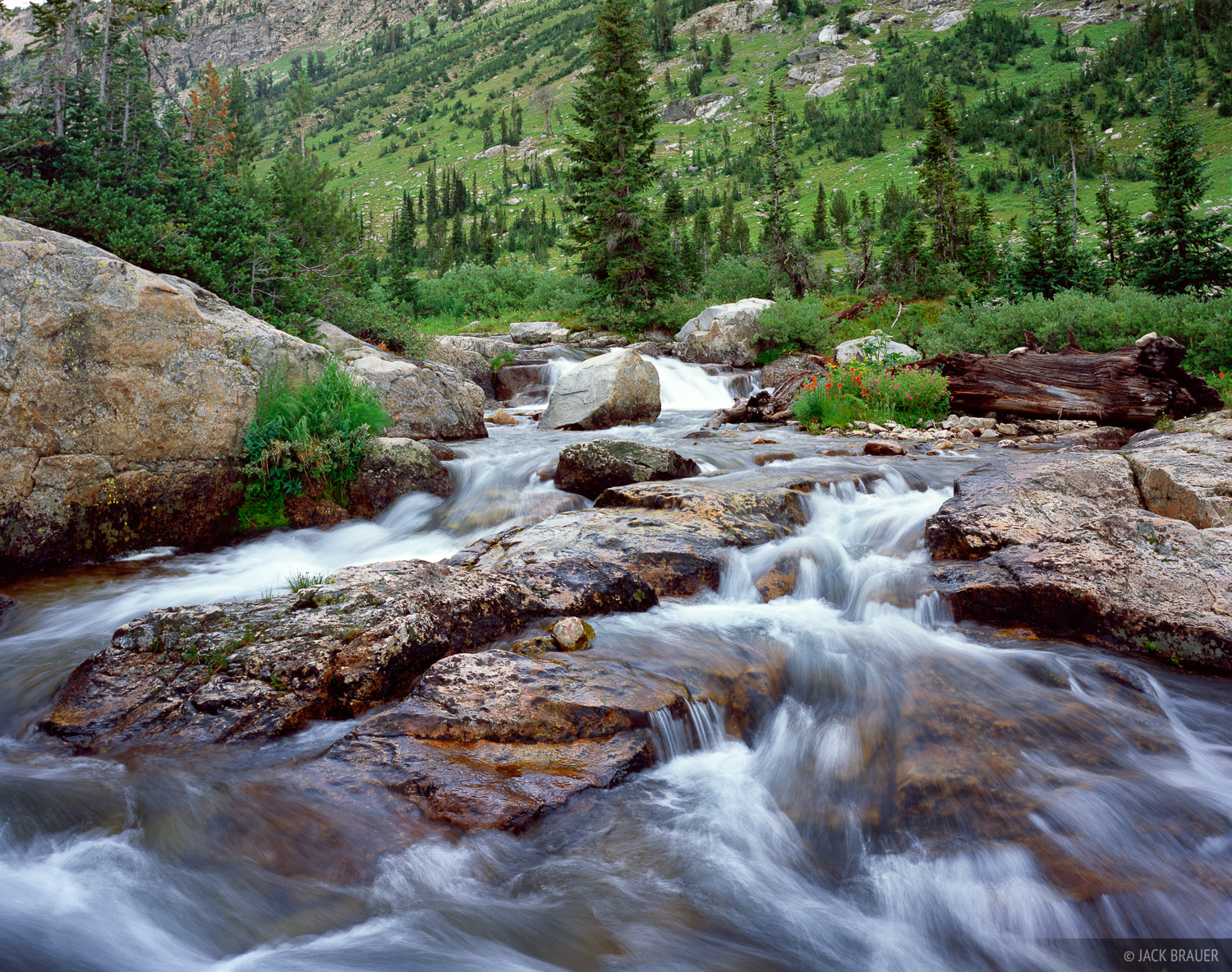Cascade Creek, waterfalls, Tetons, Wyoming, Grand Teton National Park, photo