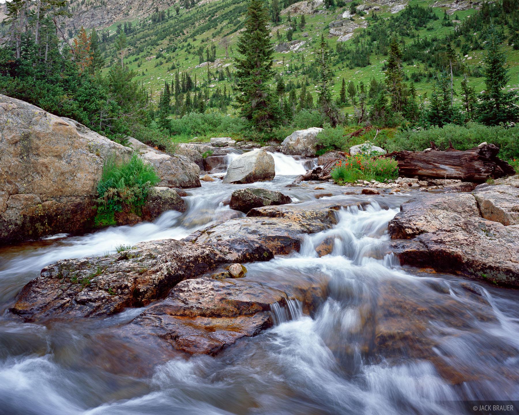 Cascade Creek Tetons Wyoming Mountain Photography By