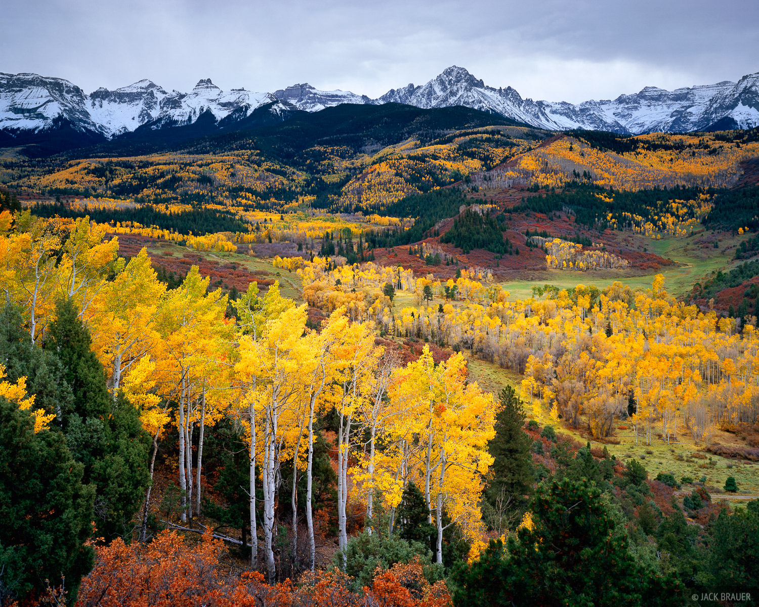 autumn vista of the Sneffels Range and its numerous golden aspen groves, Colorado - October