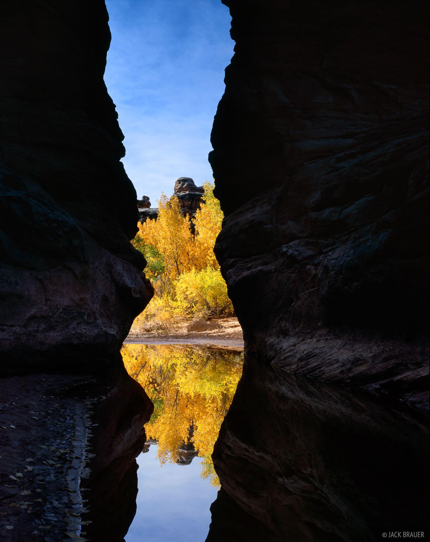 The Narrows, in Grand Gulch, Cedar Mesa region - November