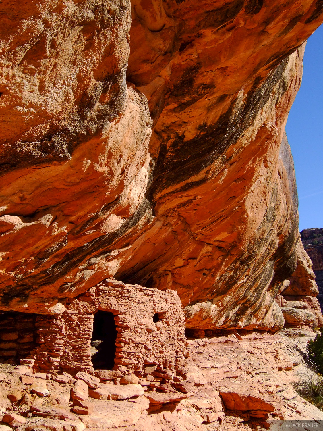 Like most other ruins I saw in Grand Gulch, I found this Anasazi ruin on accident.  I was reading my map incorrectly, and left...