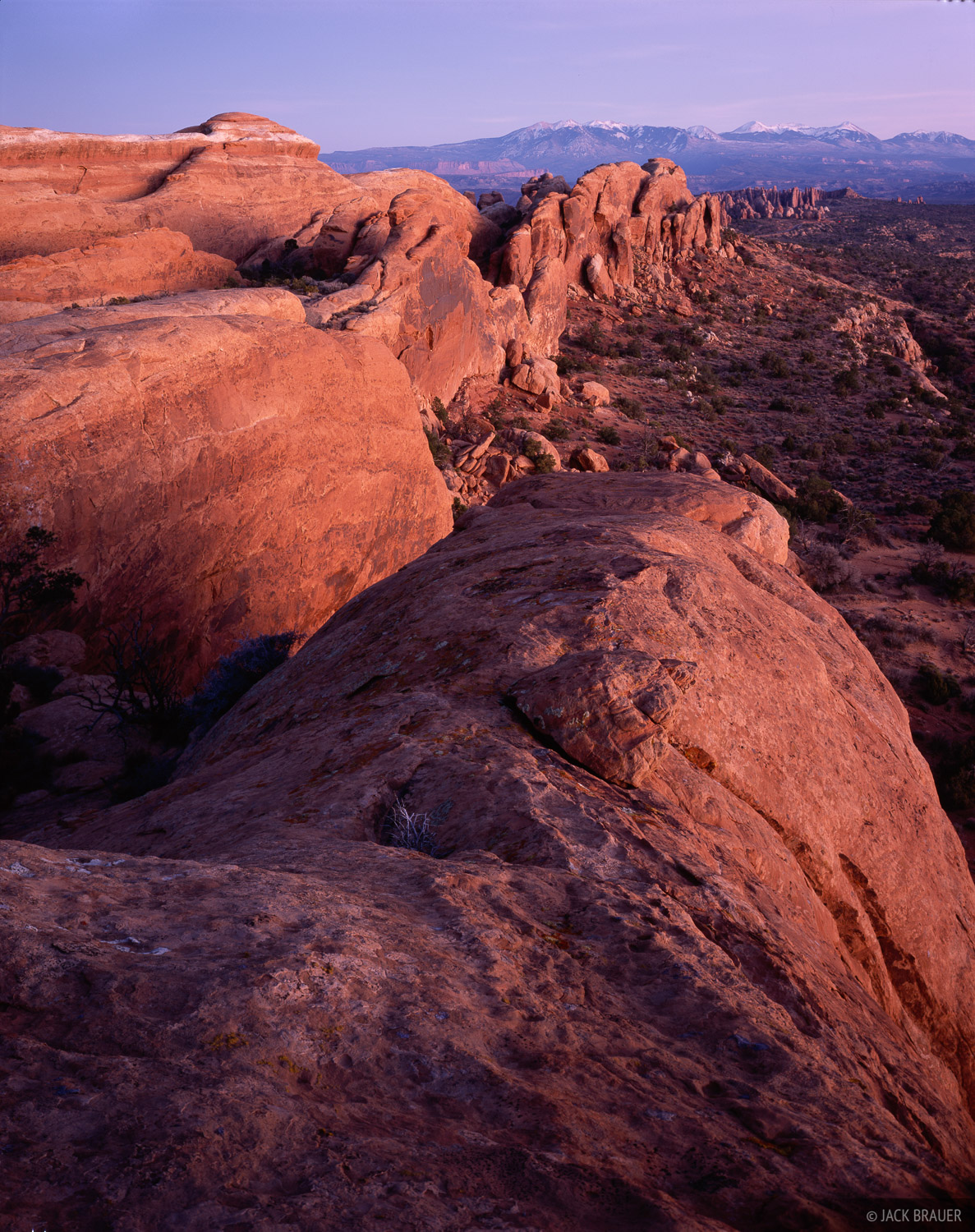 Dusk light illuminates the great fins of Arches National Park, near Moab. La Sal Mountains are towering in the distance - November...