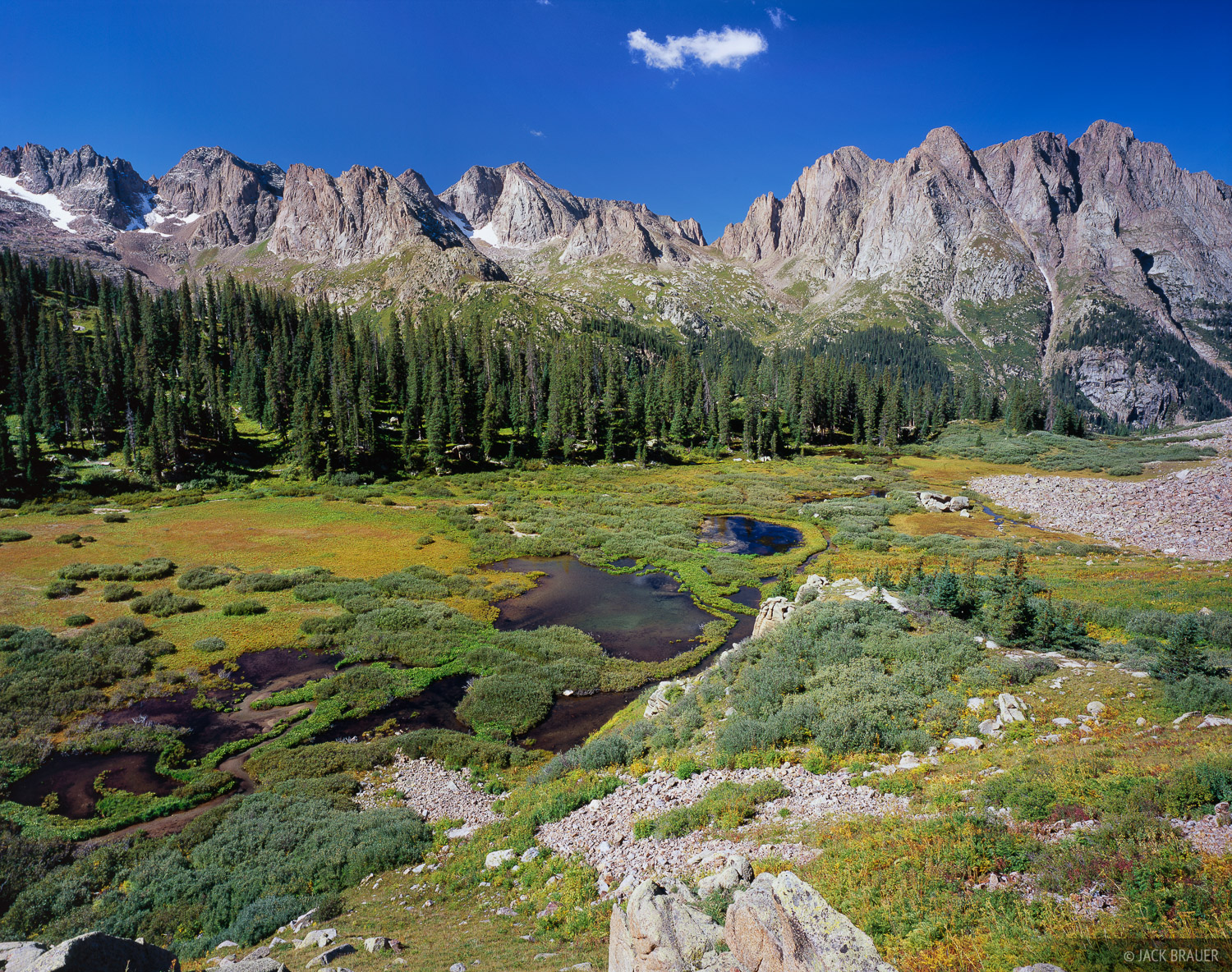 Meadow, Needle Mountains, Weminuche Wilderness, Colorado, photo