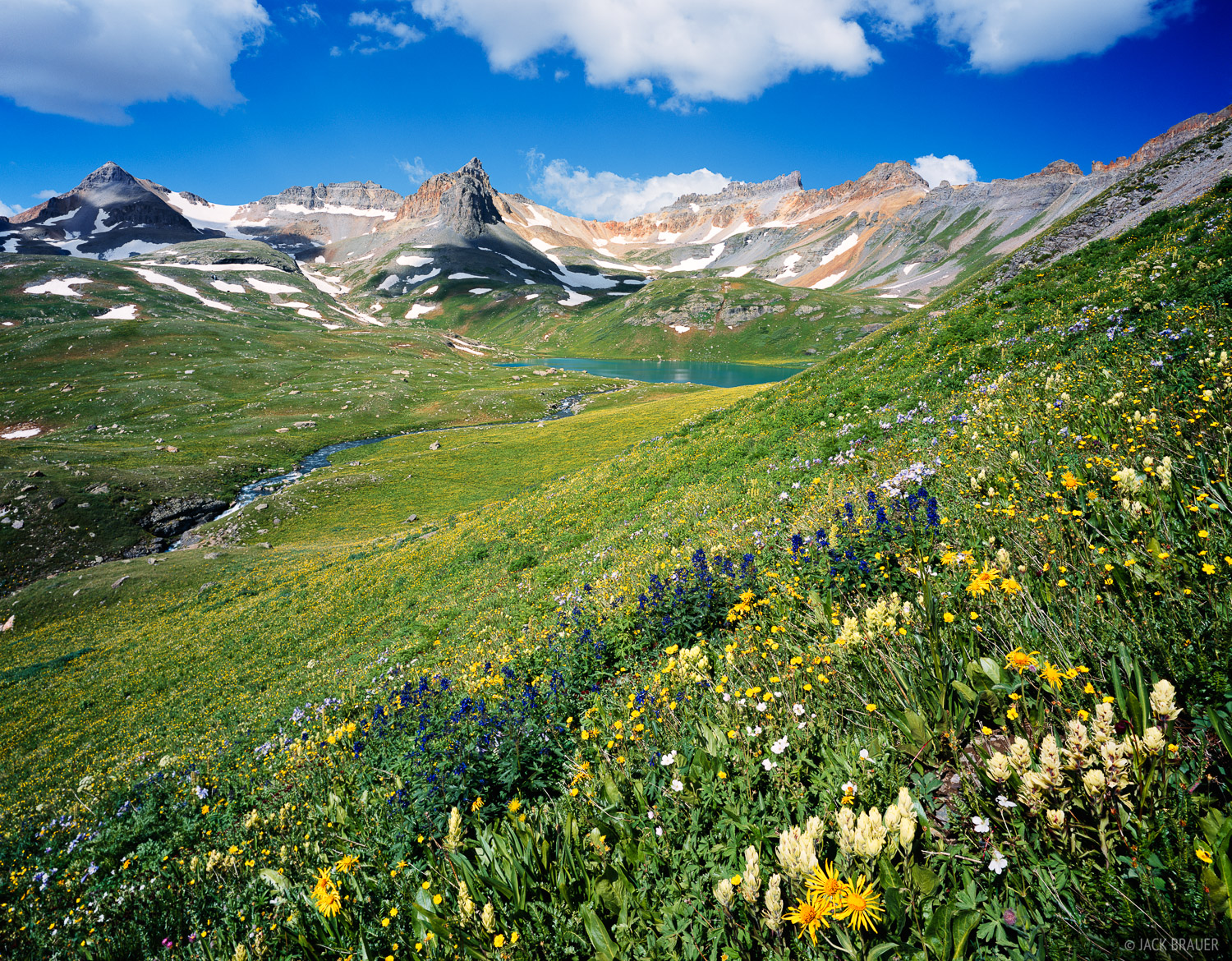 Ice Lakes, Wildflowers, San Juan Mountains, Colorado, photo
