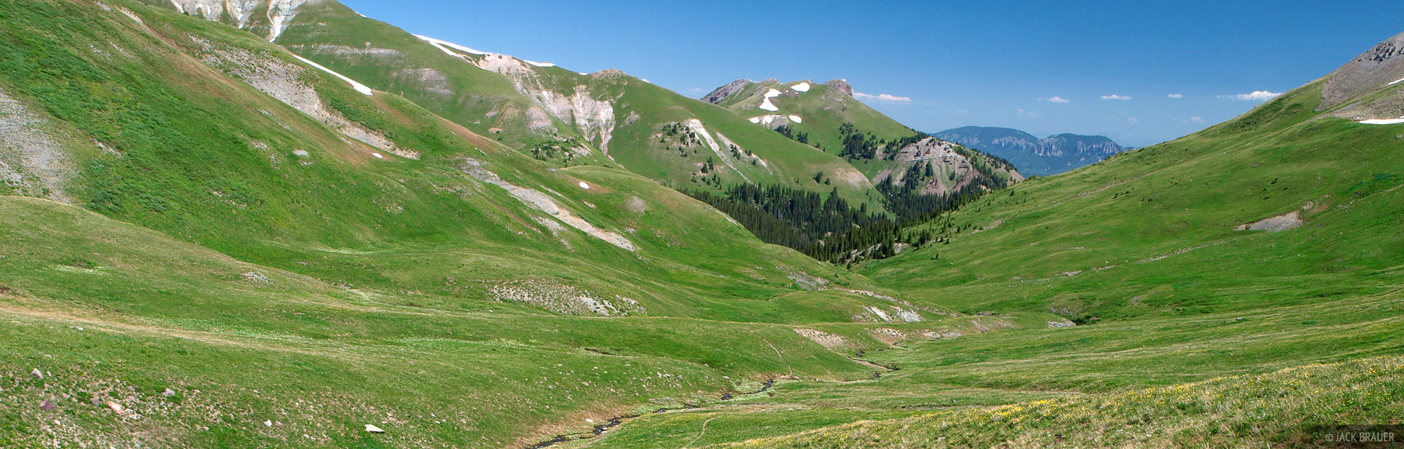 The green tundra paradise of the Uncompahgre Wilderness in July.