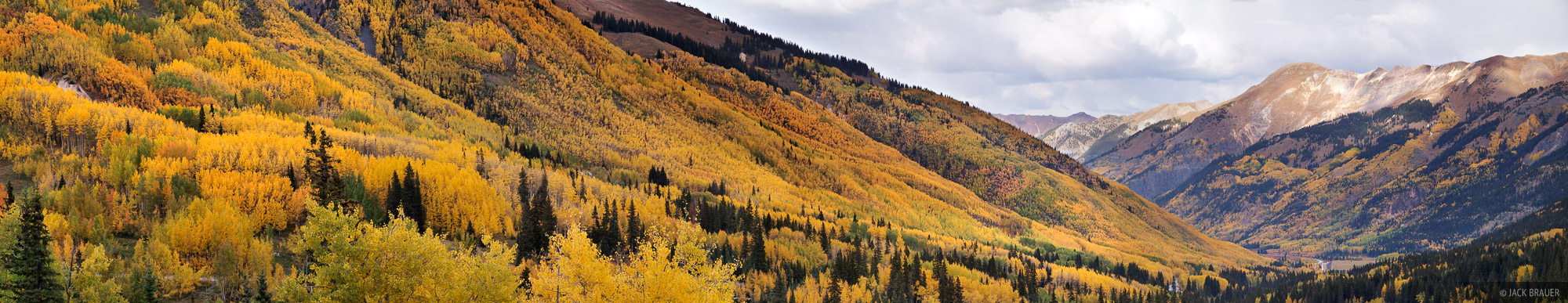 Aspens, Red Mountain Pass, Ironton, Colorado, photo