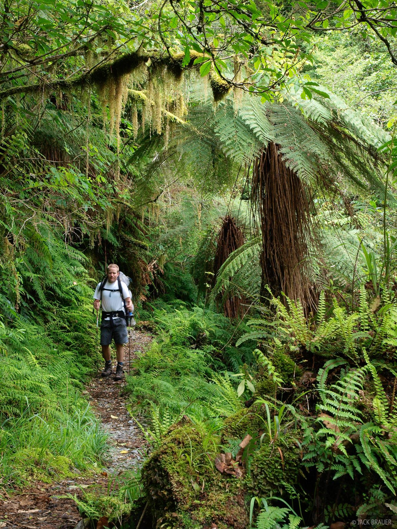 New Zealand, Copeland Track, hiking, photo