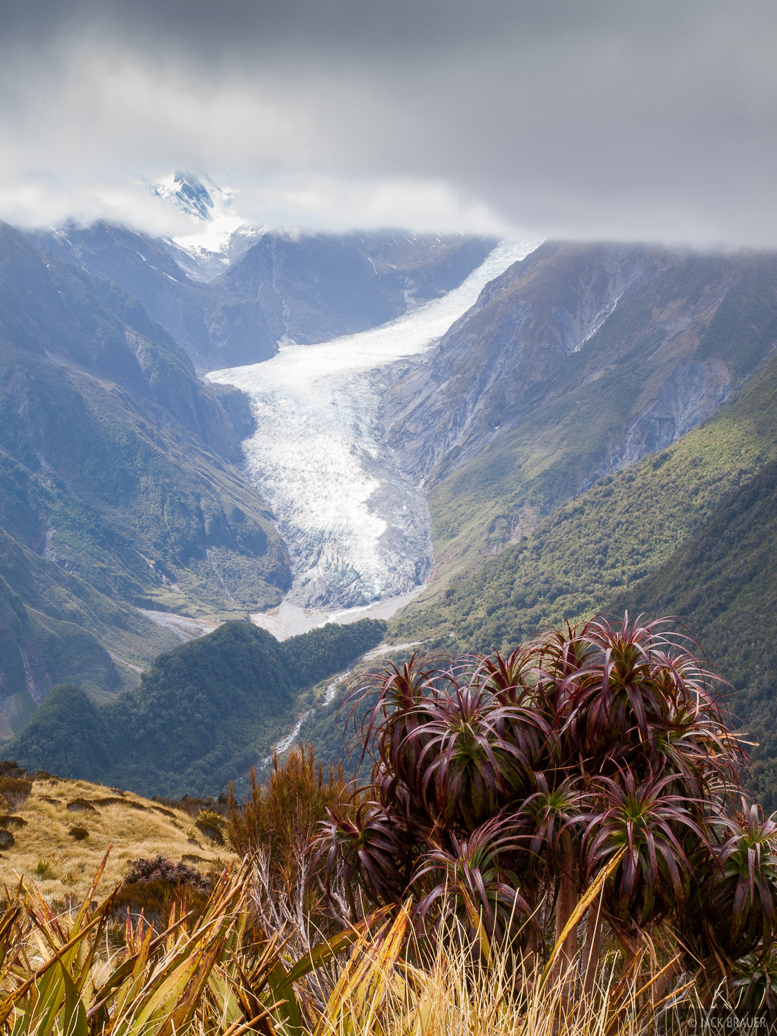 New Zealand, Fox Glacier, photo