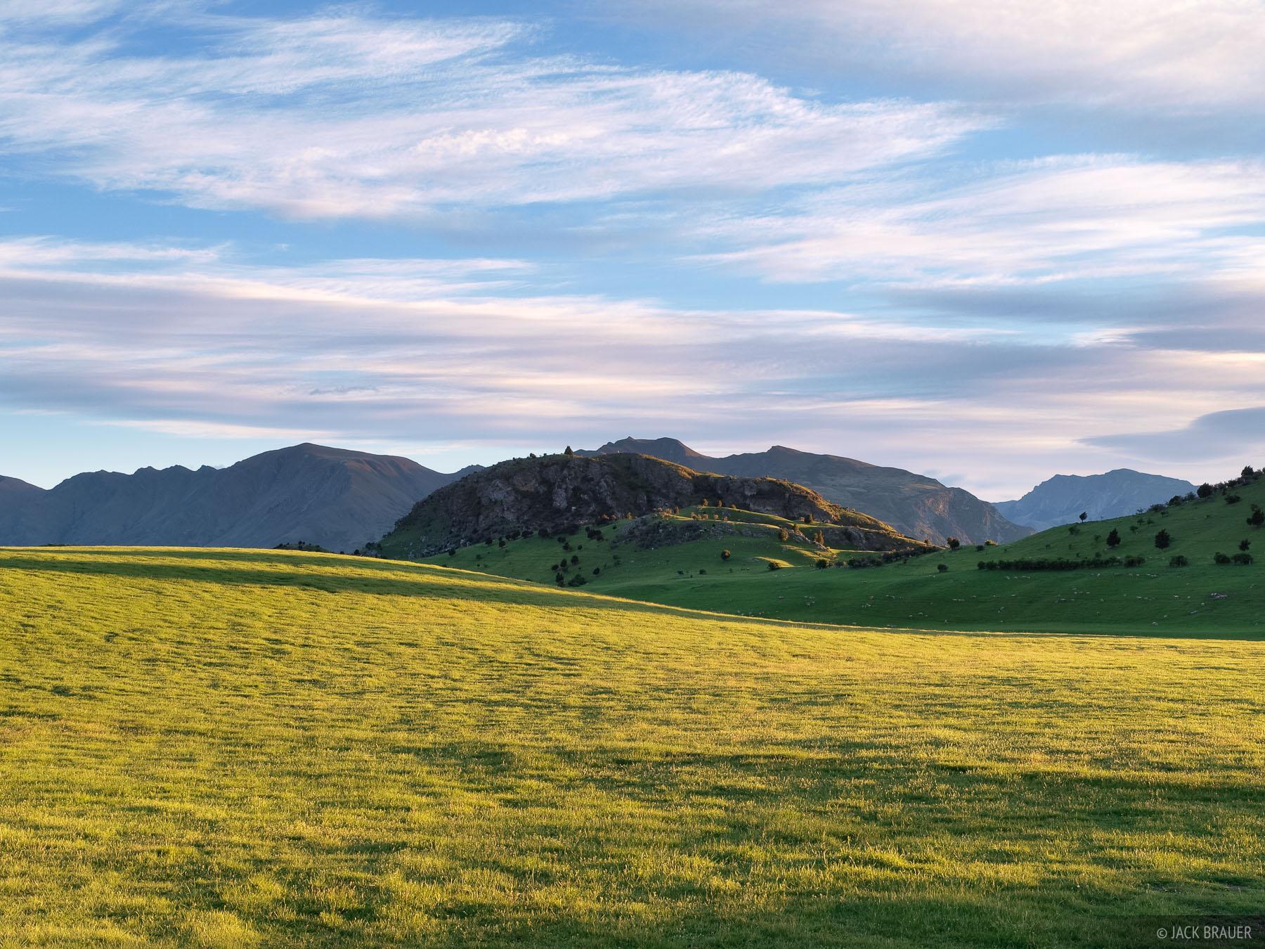 Wanaka, Sheep pastures, photo