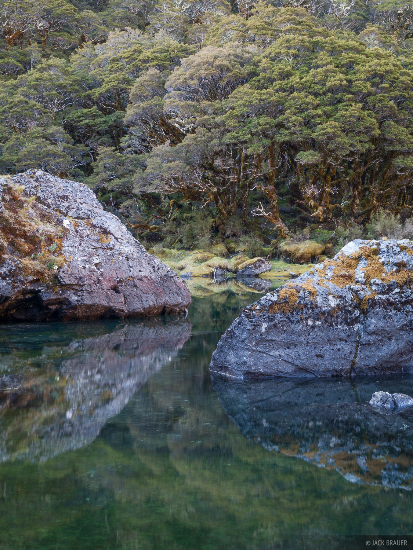 New Zealand, Routeburn Track, photo