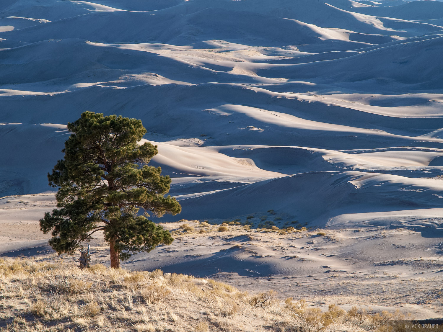 As you hike up the Sand Ramp Trail along the eastern side of the dunes at the foot of the Sangre de Cristo mountains, it's amazing...