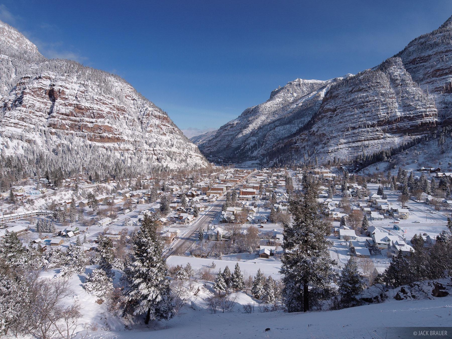 Bluebird, Ouray, Colorado, photo
