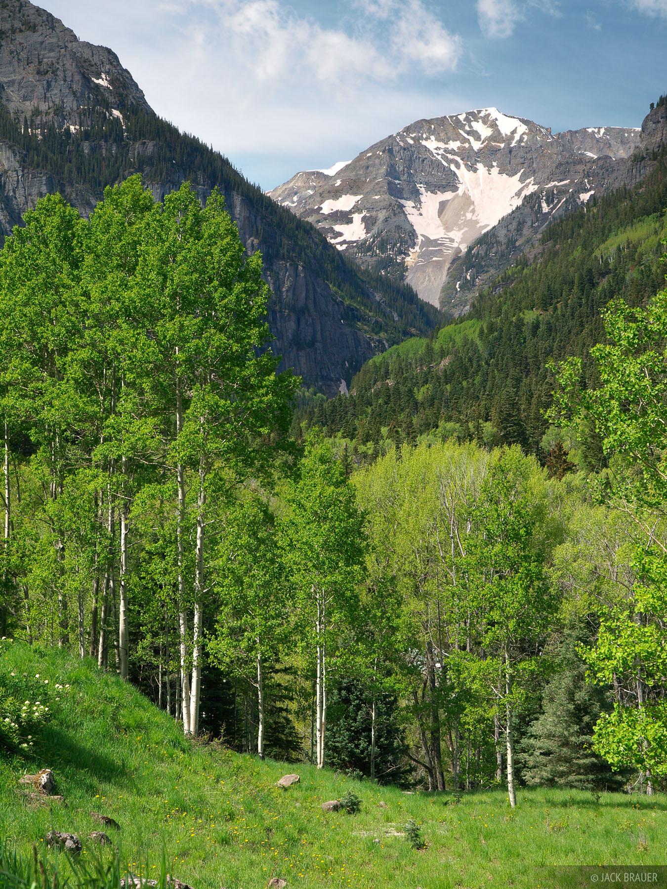 United States Mountain, San Juan Mountains, Colorado, Camp Bird Road, photo