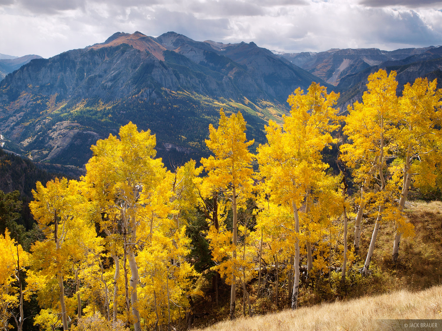 aspens, Ouray, San Juan Mountains, Colorado, September, photo