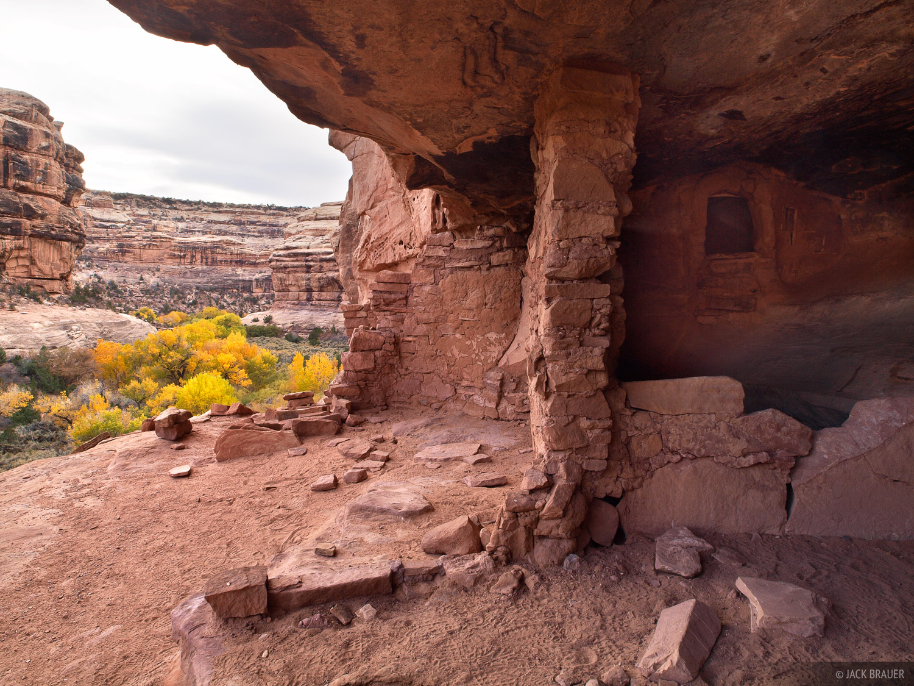 Grand Gulch, Utah, ruin, cottonwoods, canyon, Bears Ears National Monument, photo
