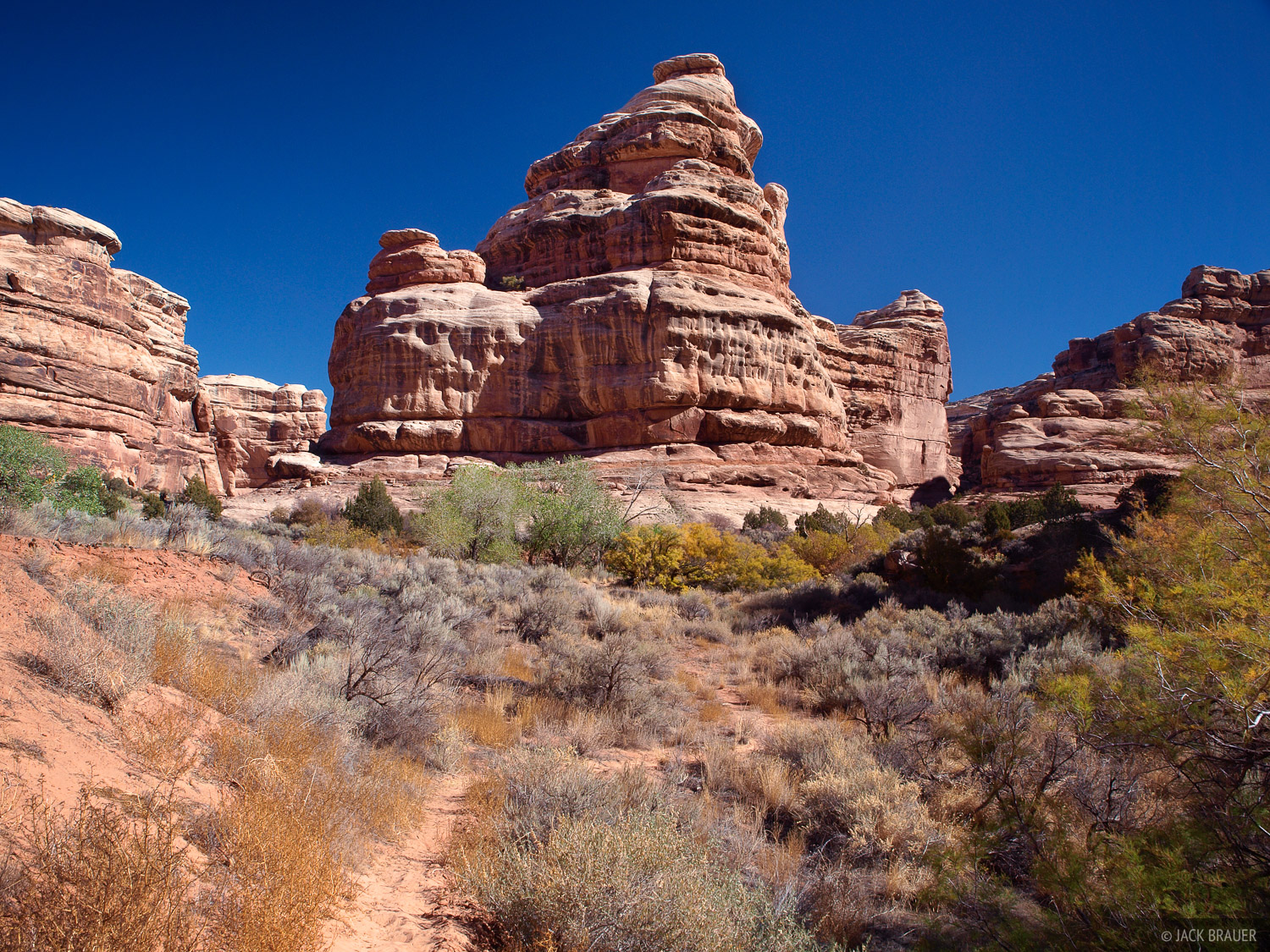 The Thumb, Grand Gulch, Utah, canyon, Bears Ears National Monument, photo