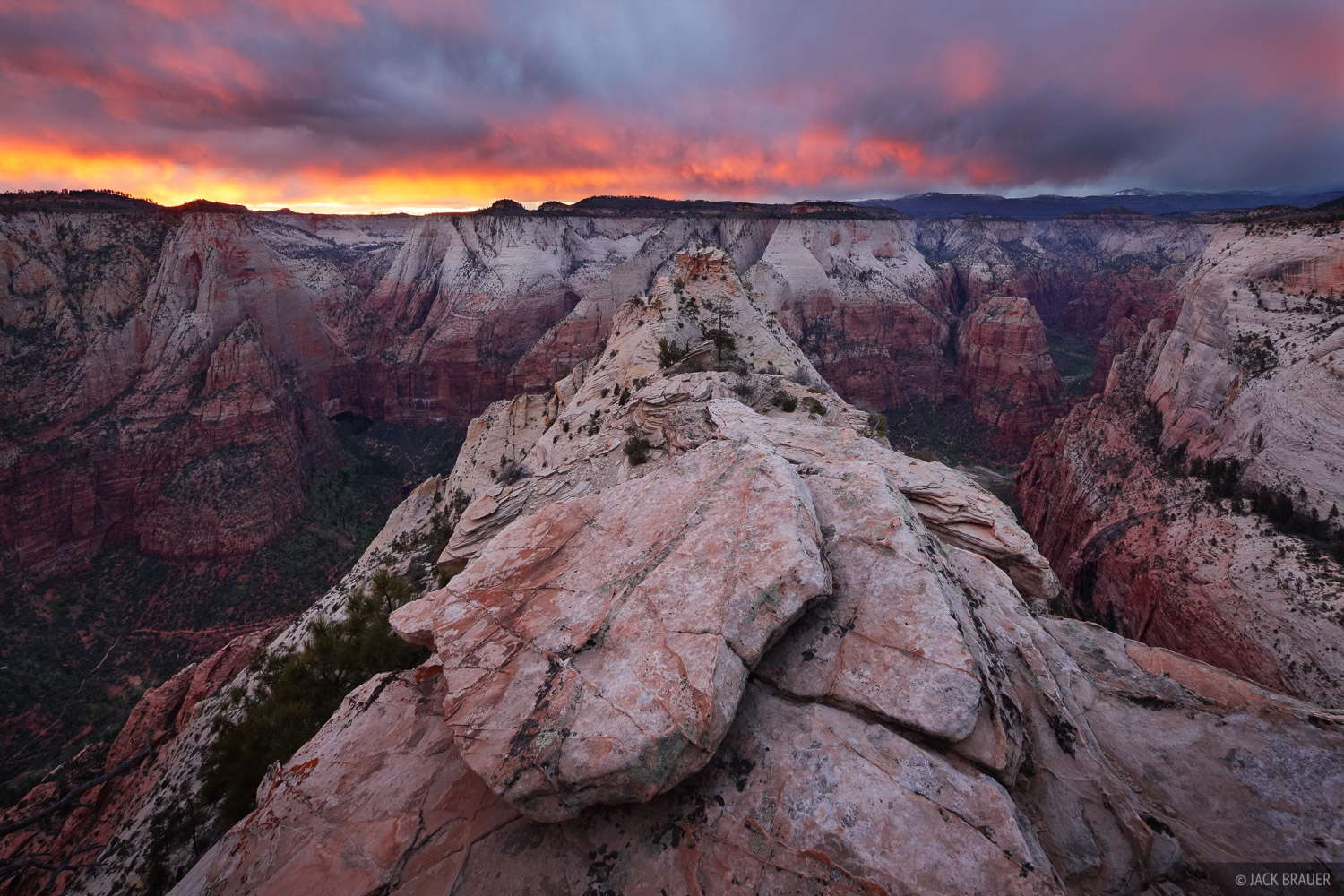 Zion National Park, sunset, Deertrap Mountain, Angels Landing, Utah, photo