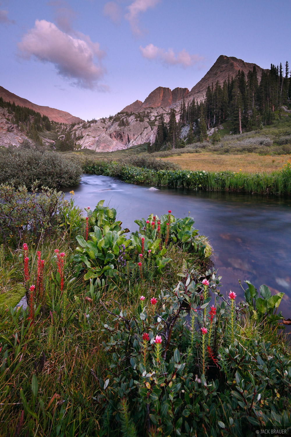 Wildflowers along Vestal Creek, under the soft light of dusk, with the Trinity Peaks as a backdrop.