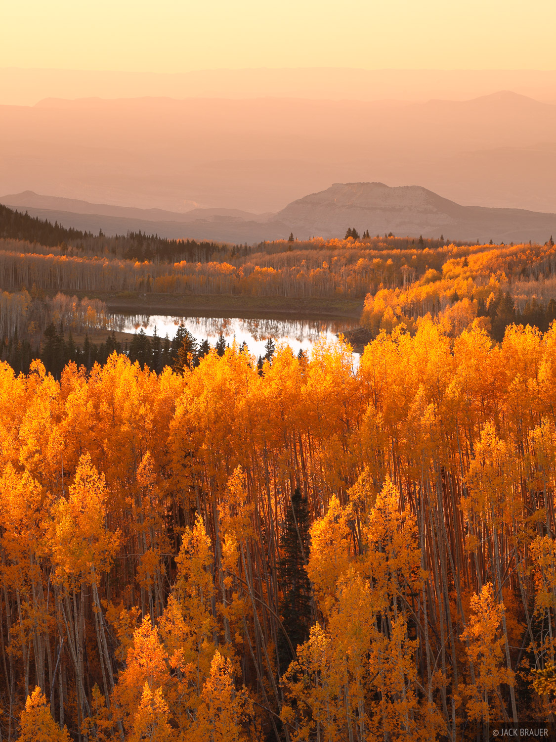 Grand Mesa, Colorado, aspens, sunset, photo