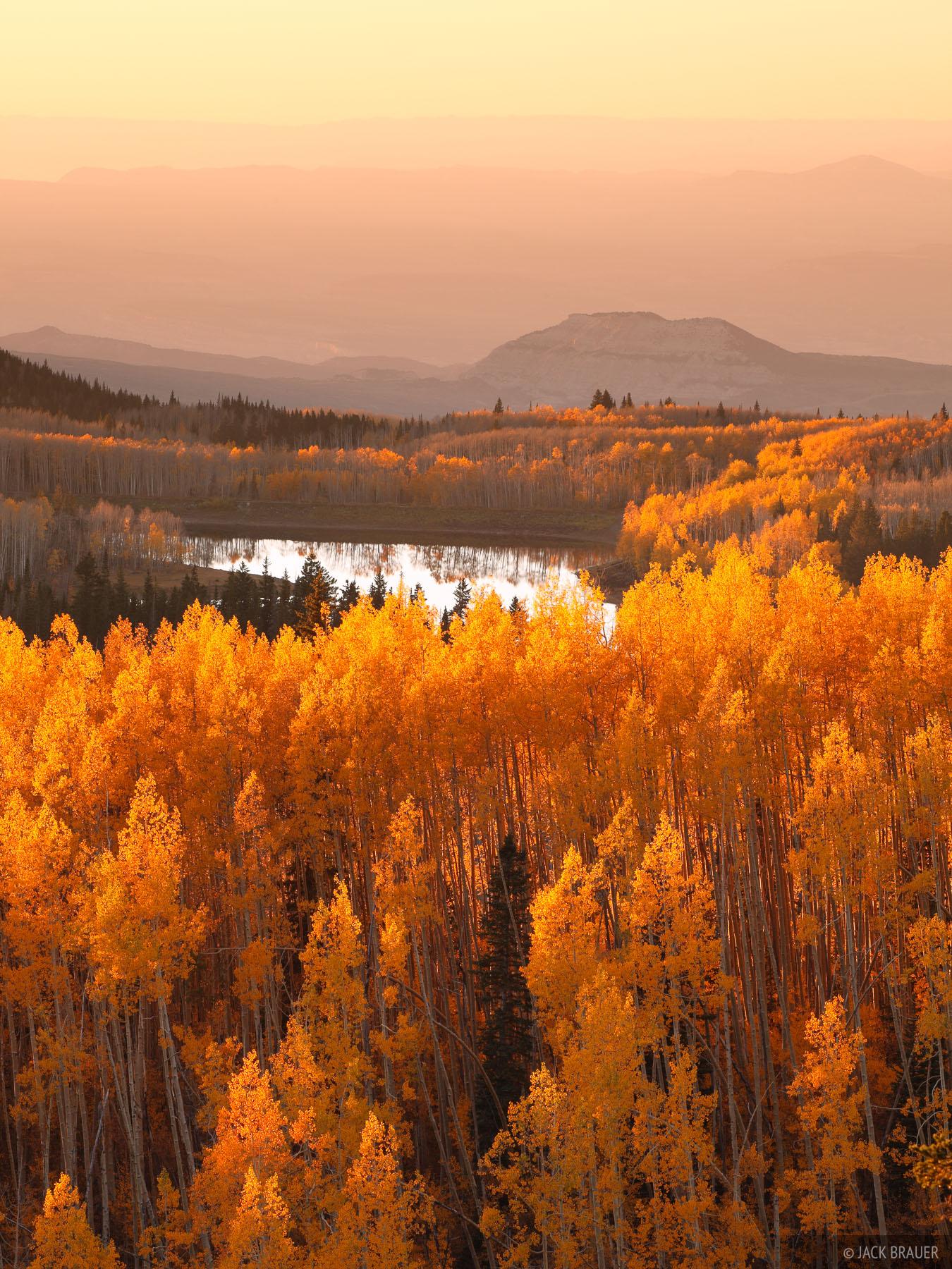 Grand Mesa, Colorado, aspens, sunset, photo