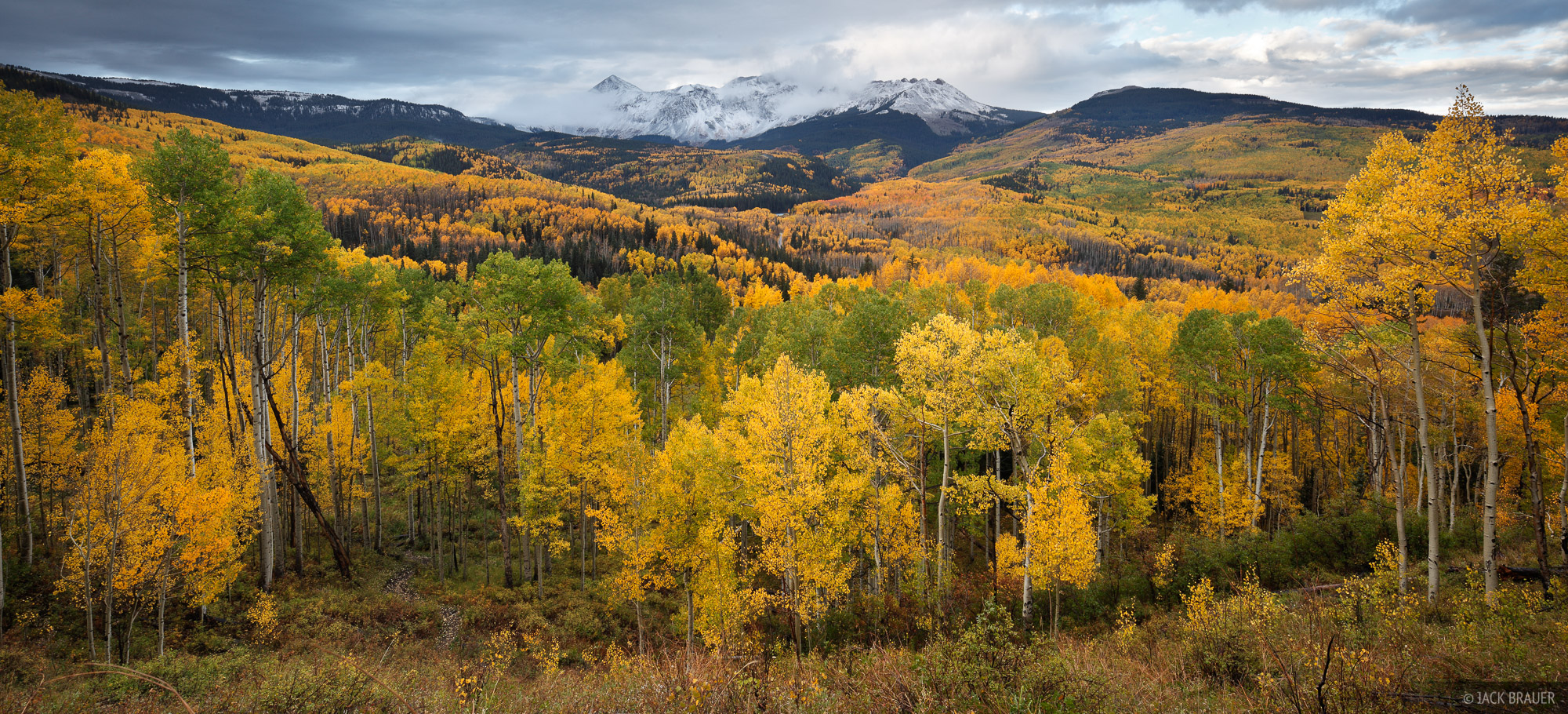 Dolores Peak, aspens, autumn, Telluride, San Juan Mountains, Colorado, photo