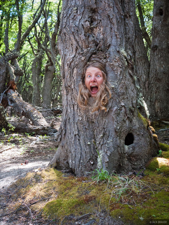 Claudia got stuck in a tree.