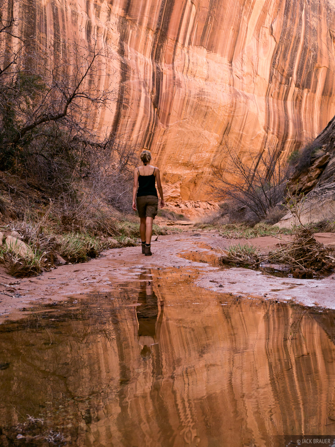 Robbers Roost Canyon, Utah, March, hiking, photo